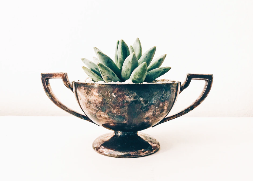 how to make your own silver cleaner for this silver bowl used as a planter